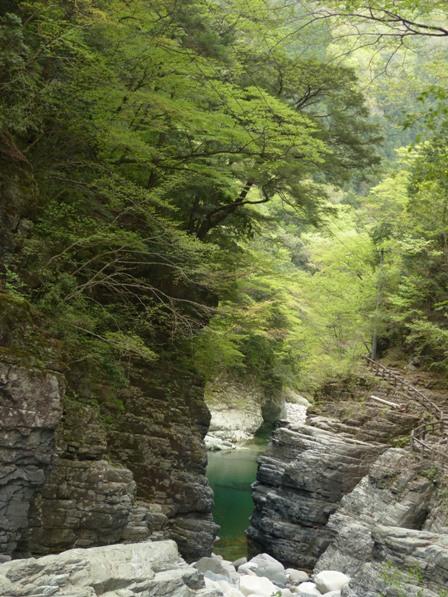 面河渓 関門遊歩道からの景色 6