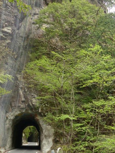 面河渓 関門遊歩道からの景色 9