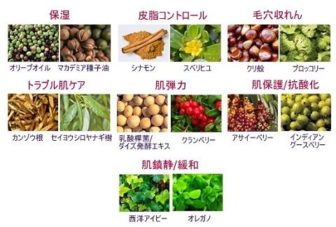 ISOI_アイソイ_ポアタイトニング_コルセット_セラム (4)