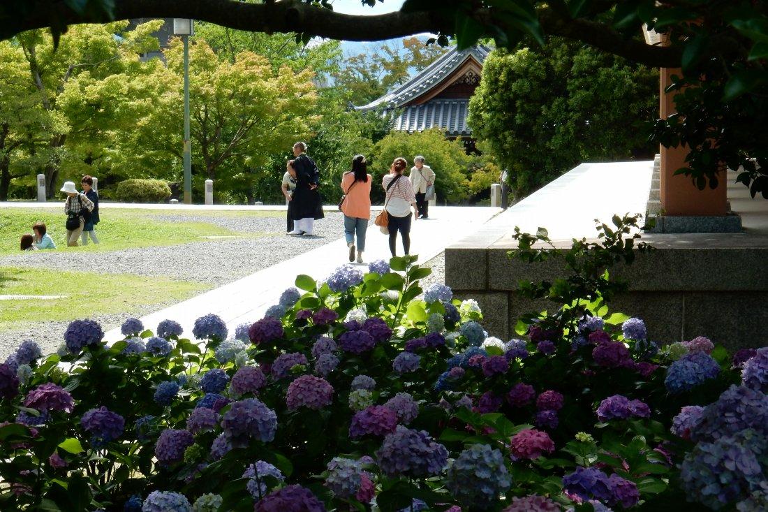 智積院今熊野 097