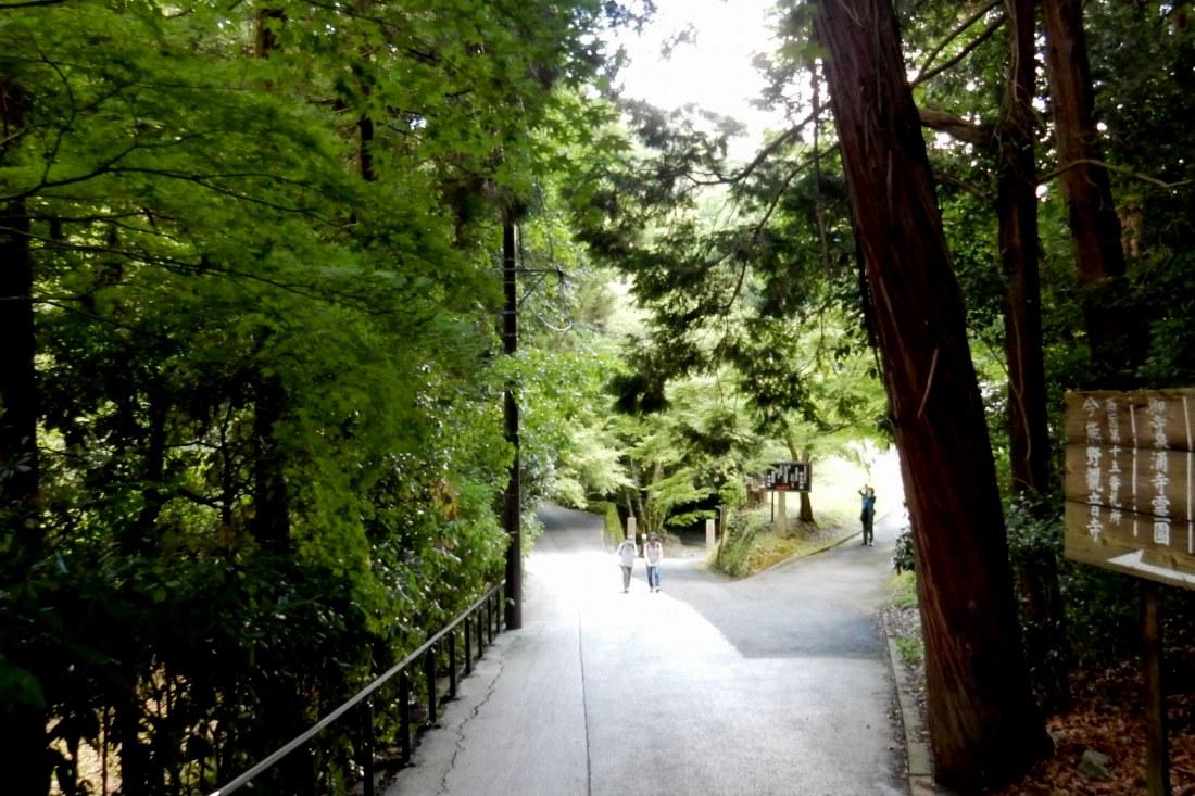 智積院今熊野 148