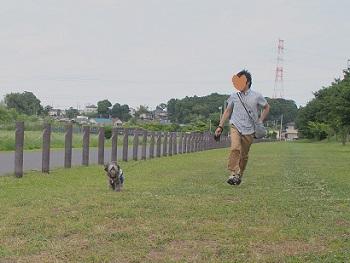 川さんぽ20150607-7