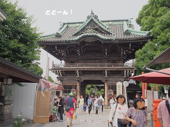 柴又20150613-10