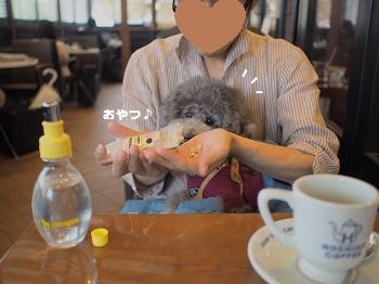 星乃珈琲20150621-6