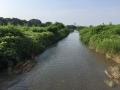 20150623水無瀬川