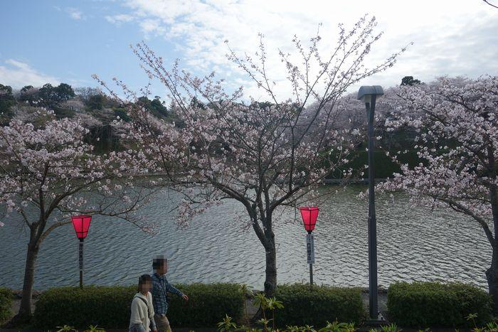 蓮花寺公園7