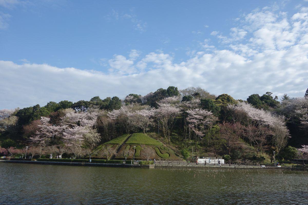 蓮花寺公園11