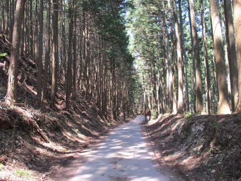 吉野山 059