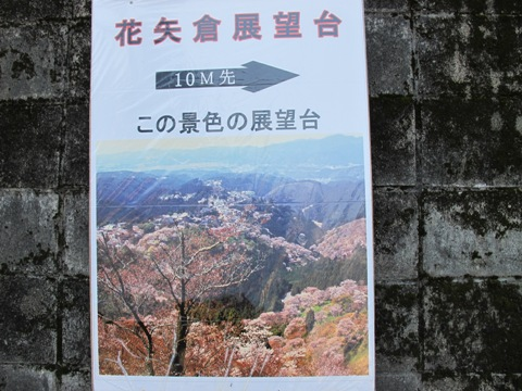 吉野山 083