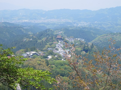 吉野山 085