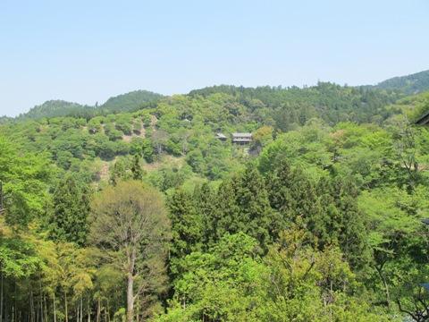 吉野山 139
