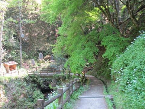 吉野山 141