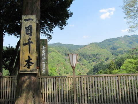 吉野山 209