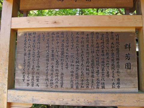 吉野山 101