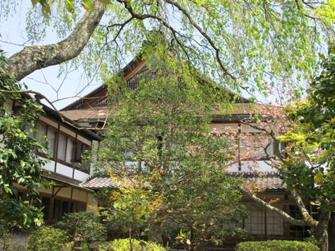 吉野山 109