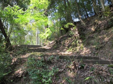 吉野山 161