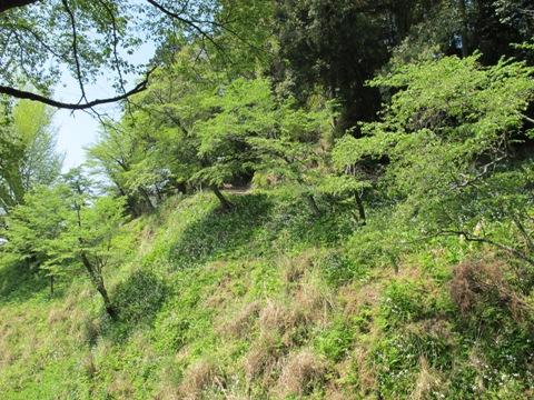 吉野山 162