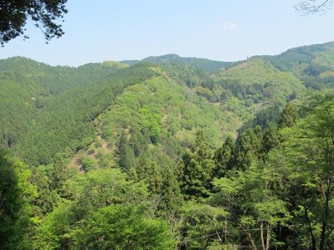 吉野山 179