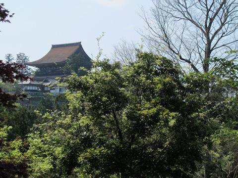 吉野山 198
