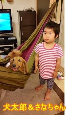 犬太郎とさなちゃん