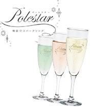 polestar2-ss.jpg
