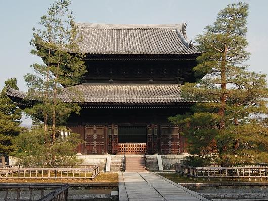 妙心寺仏殿01-20141230