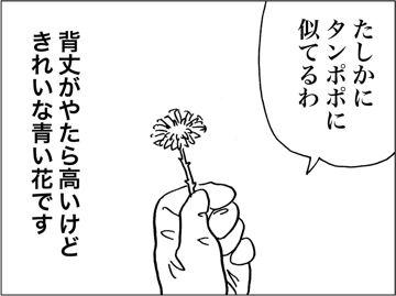 kfc00324-7