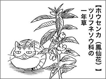 kfc00330-5