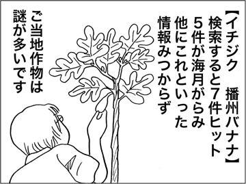 kfc00332-8