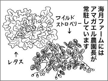 kfc00339-1