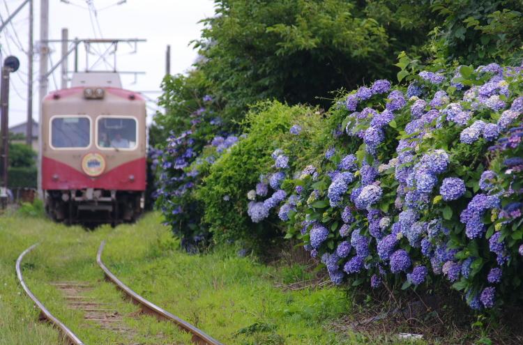 2015年6月28日 銚子電鉄 004