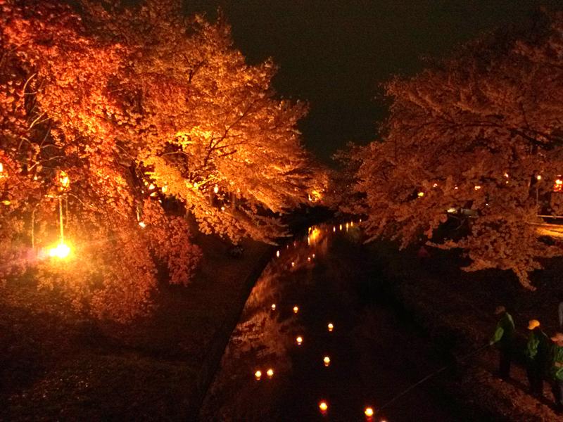 桜まつり2015