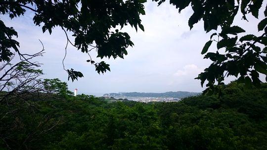 kinuhariyamaDSC_0291.jpg