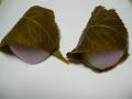 01504桜餅