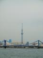 0150318隅田川清洲橋スカイツリー01