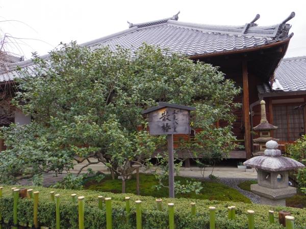 椿寺地蔵院3