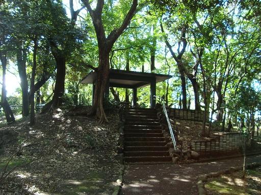 旧渋沢庭園内の古墳