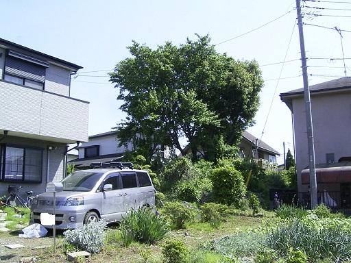 上浜田 6号墳