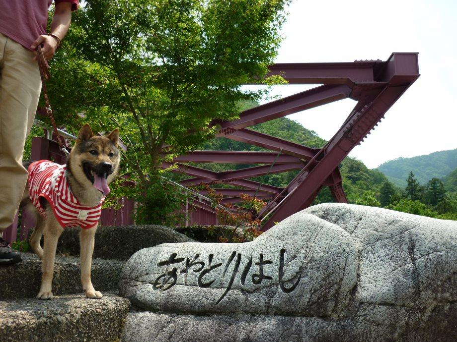 201505北陸新緑旅02-27