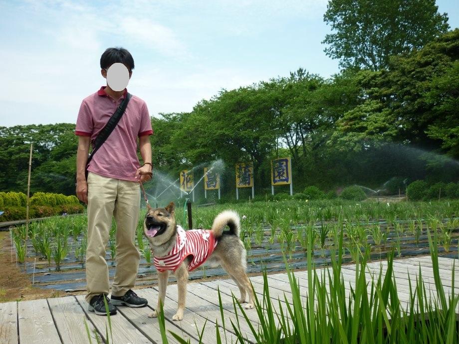 201505北陸新緑旅04-14