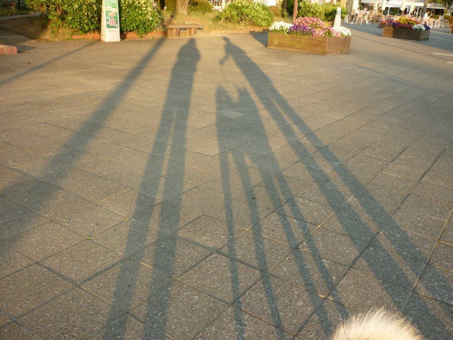 201505北陸新緑旅11-19