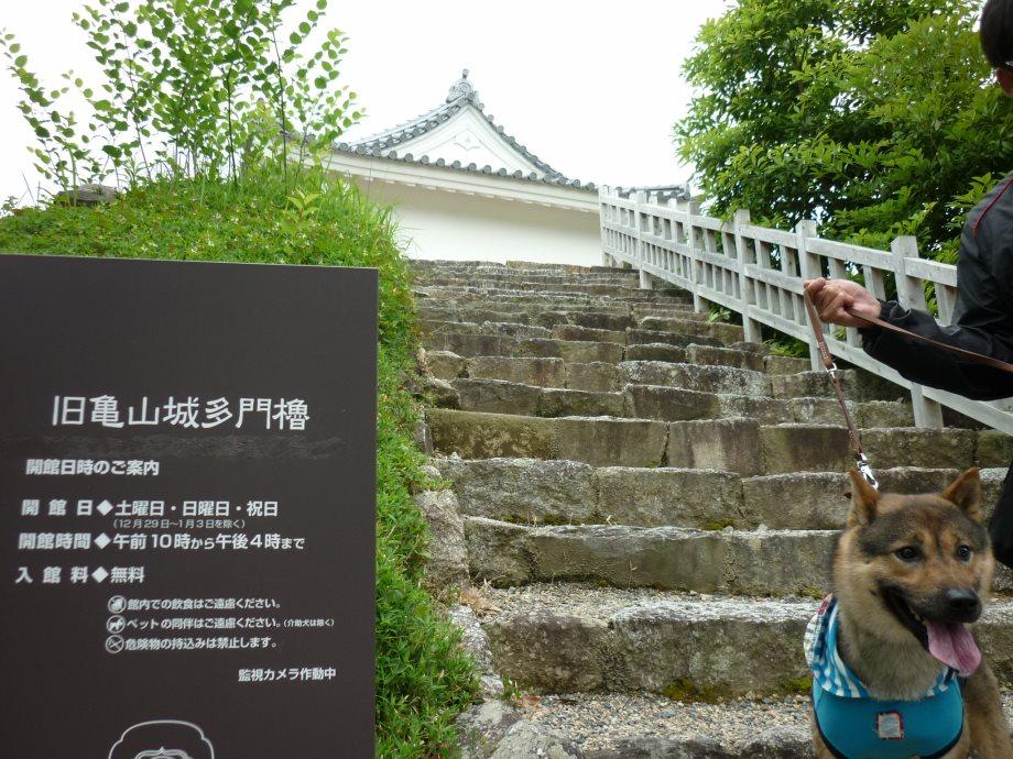 201506亀山宇治名張01-02