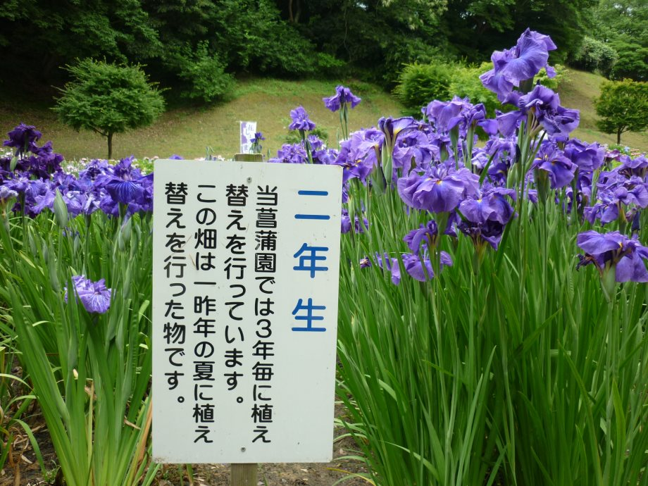 201506亀山宇治名張01-09