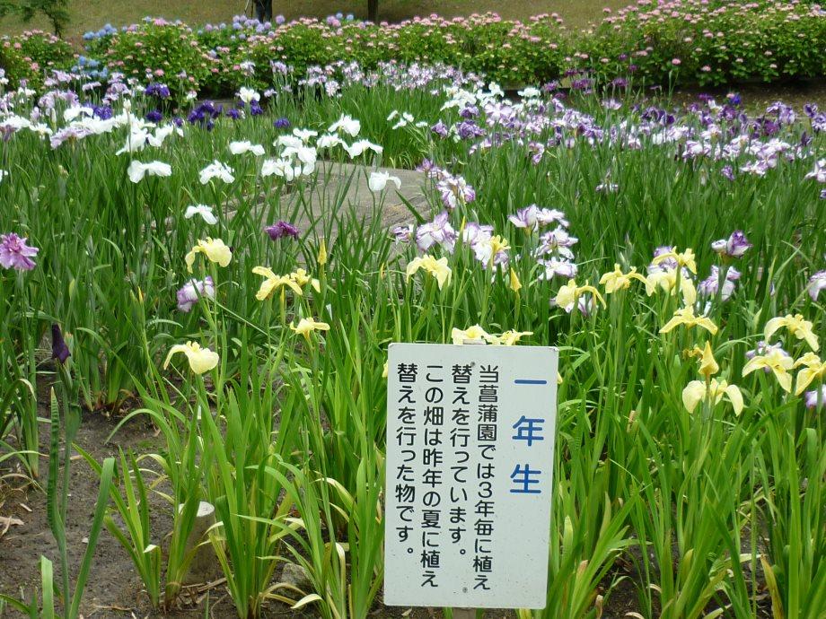 201506亀山宇治名張01-08