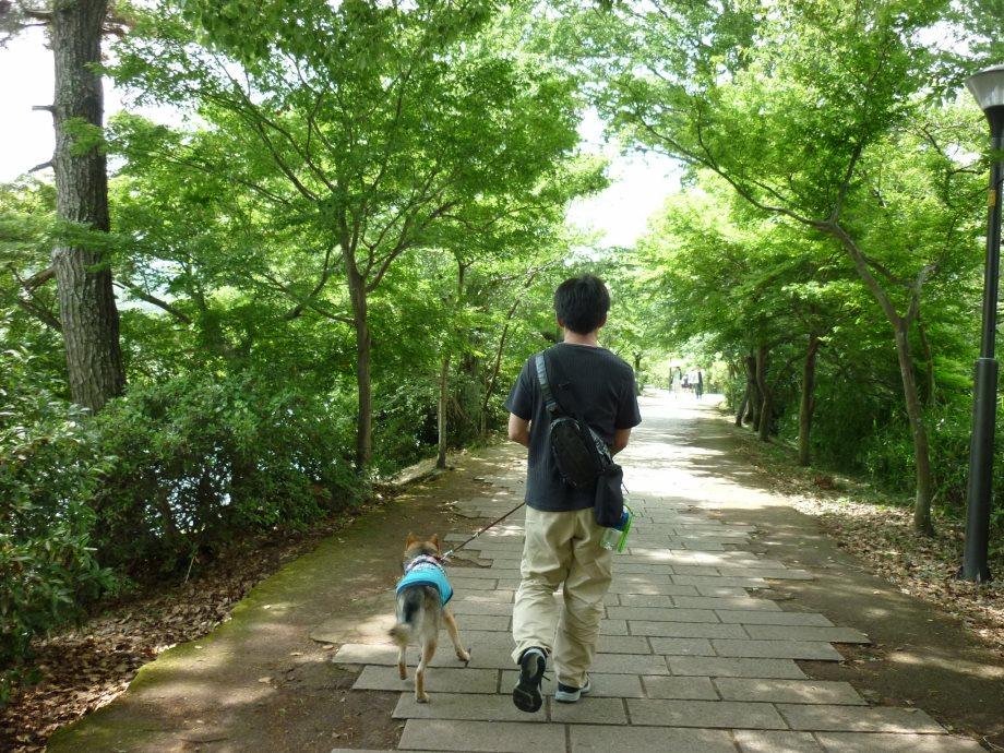 201506亀山宇治名張02-21
