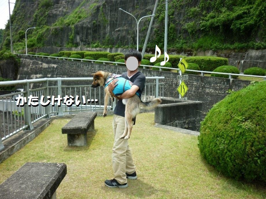 201506亀山宇治名張03-05