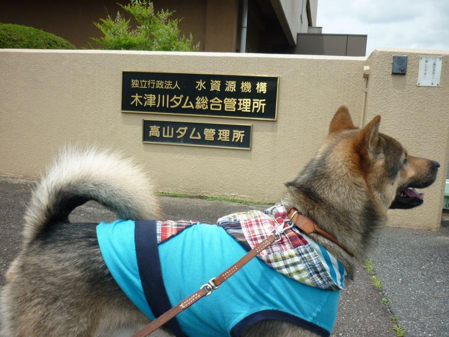 201506亀山宇治名張03-15