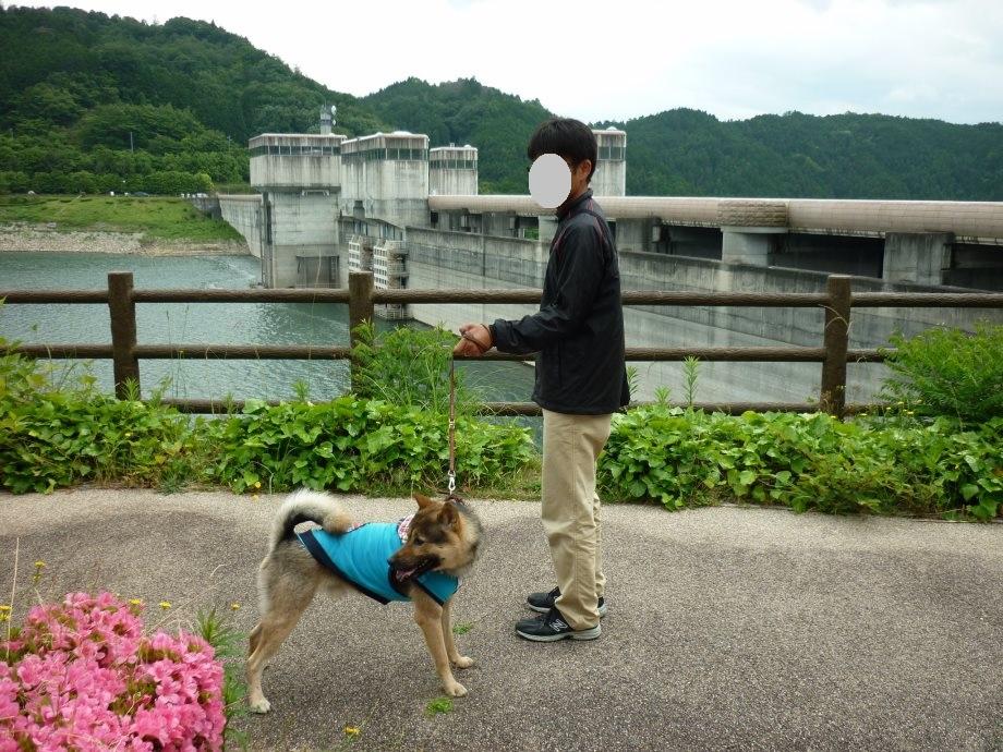 201506亀山宇治名張05-05
