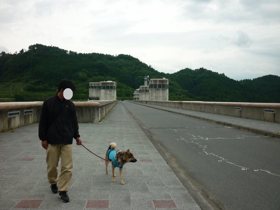 201506亀山宇治名張05-09