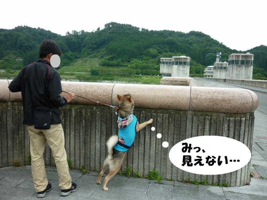 201506亀山宇治名張05-10